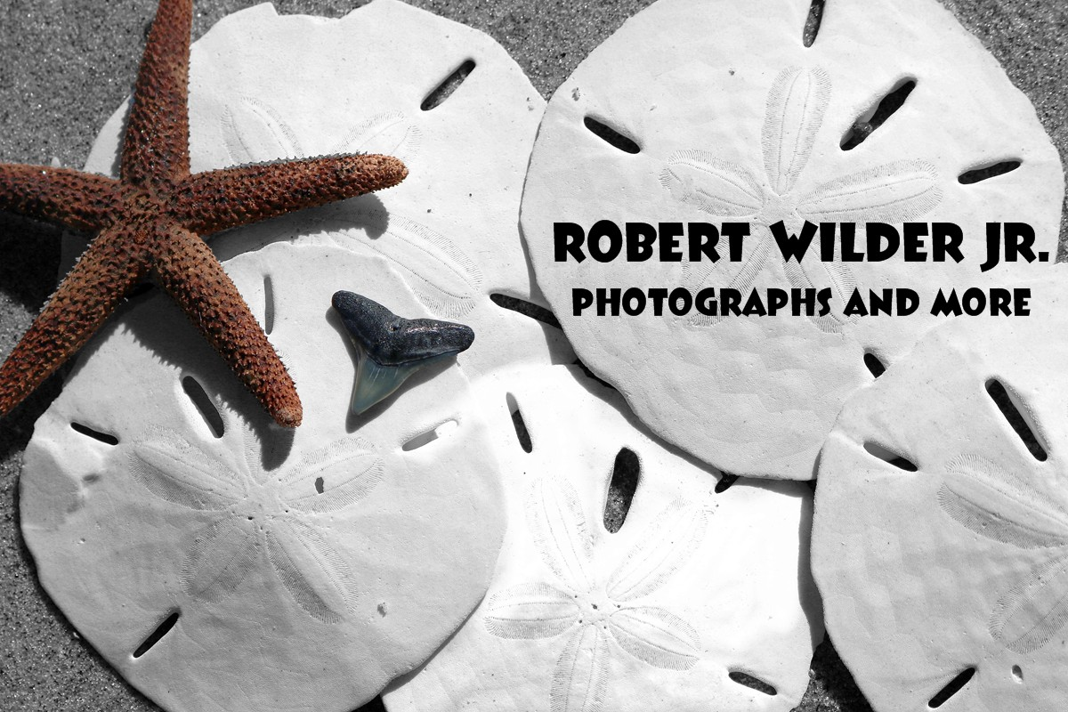 Robert Wilder Jr - Artist Website